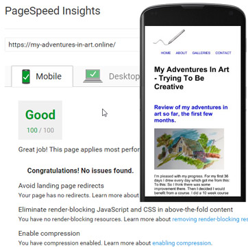 page speed insight success google